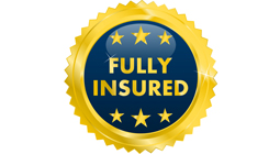 fully insured pressure washing xtreme cleanz